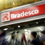 Bradesco  Setor: Finanças  Valor de mercado em 28 de fevereiro de 2014: R$ 118 bilhões  Quanto ganhou em valor de mercado em fevereiro: R$ 3,3 bilhões