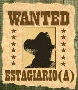 wanted_estagiario2